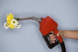 Из чего складывается цена на топливо?
